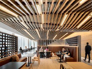 Ceilings Plus | Barz™