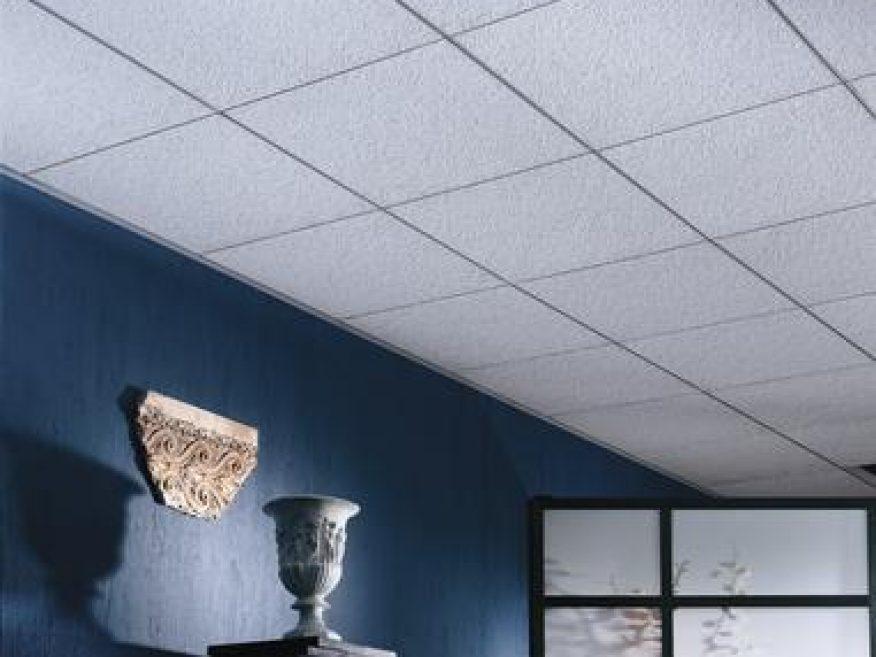 Arctic Acoustical Panels Acoustical Classroom Ceiling