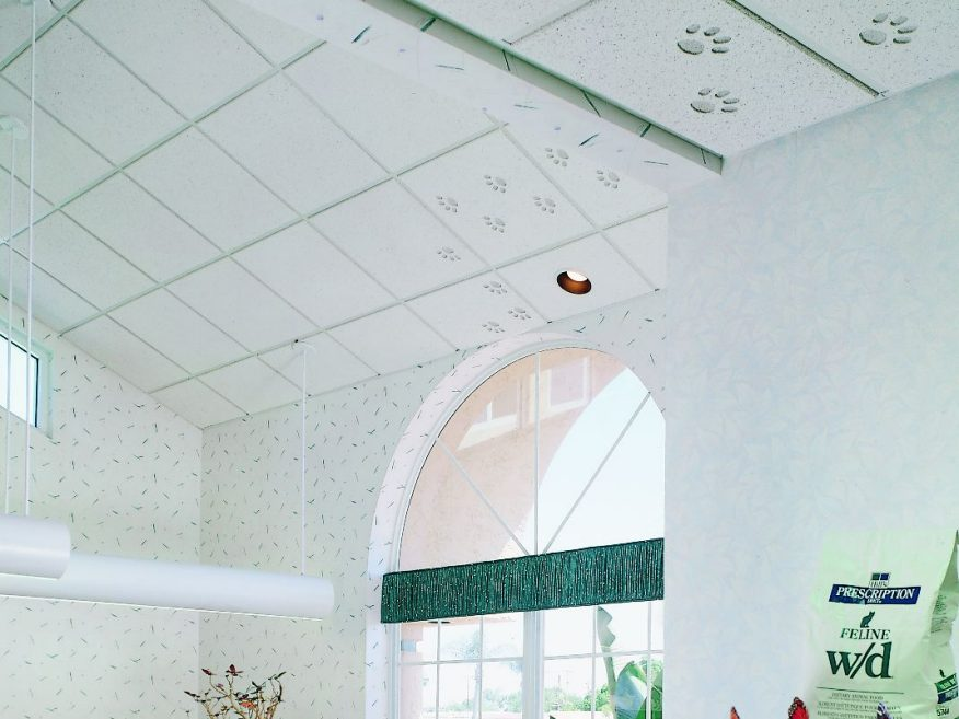 Renditions Animations Frost Acoustical Ceiling Panels Allow For
